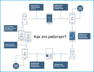 Схема работы KYC.Legal